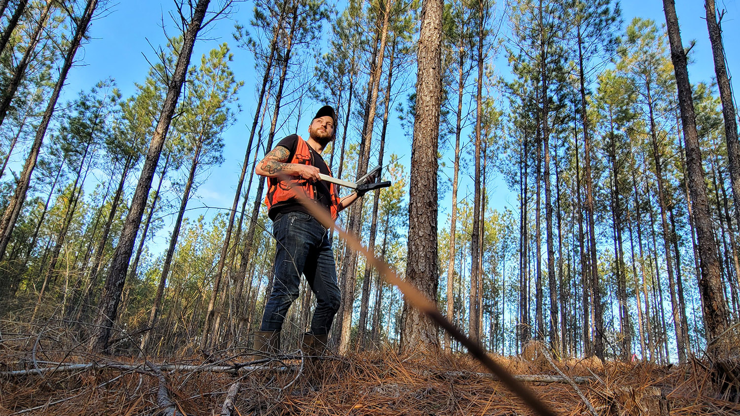 Working in the Woods - Modeling Growth Response of Loblolly Pine and Economic Returns From Nutrient Additions Based on a Gradient of Soil Characteristics Across the Southeastern US - College of Natural Resources NCState University