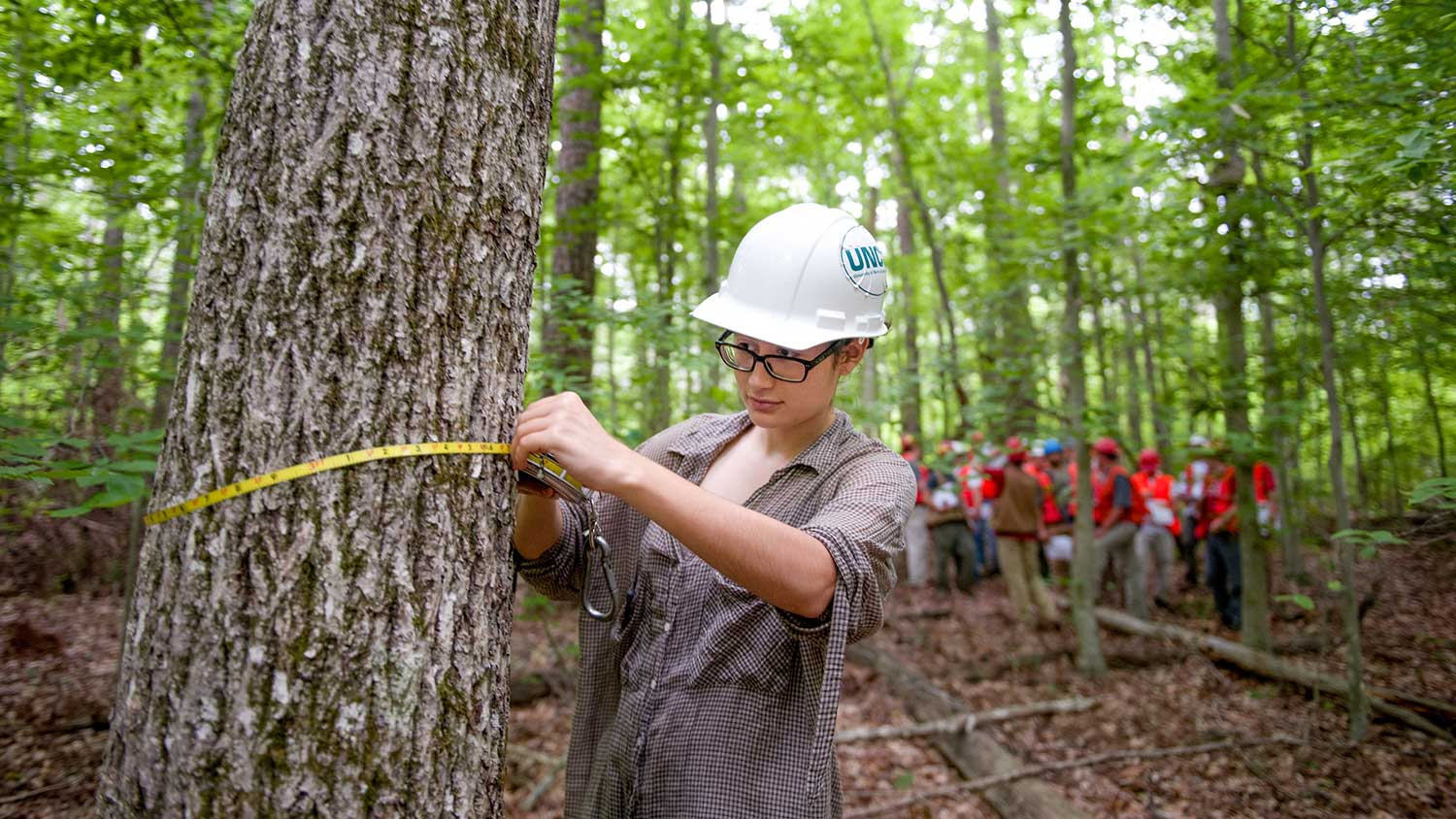 McIntire Stennis - - College of Natural Resources at NCState