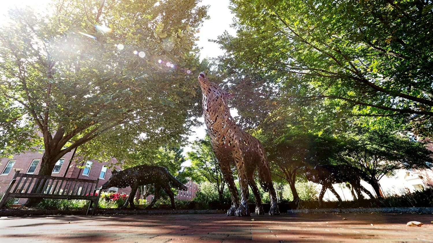 Wolf sculptures on campus - College of Natural Resources at NCState University