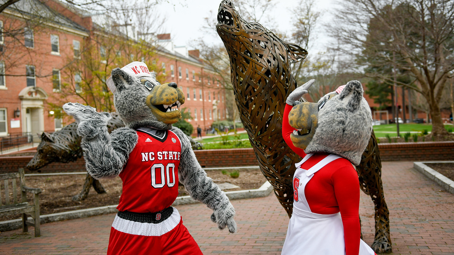 Career Connections - College of Natural Resources at NCState University