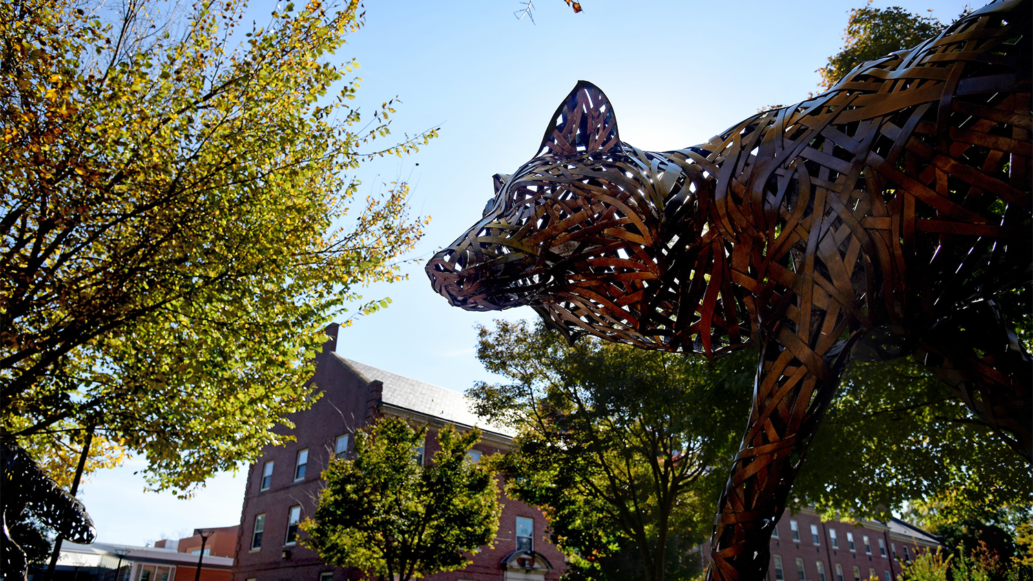 Wolf Statue - Homepage - College of Natural Resources NCState University